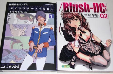 kaishiden_blush2_1011.jpg